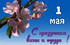 открытка-на-1-мая